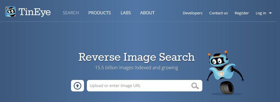 Поисковая система фотографий и изображений TinEye