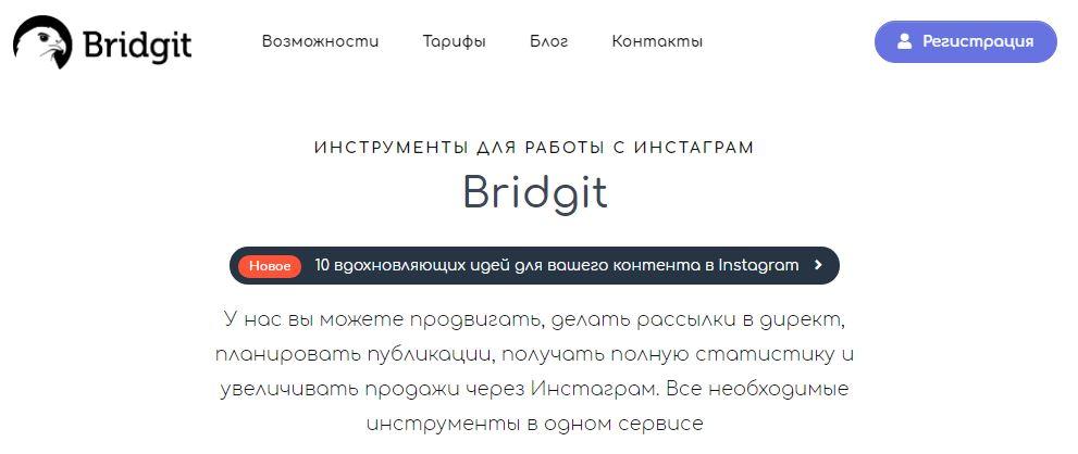 обзор bridgit.me